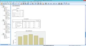 IBM SPSS Statistics Base 21.0