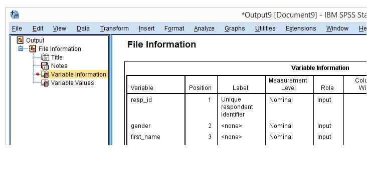 SPSS Data Editor
