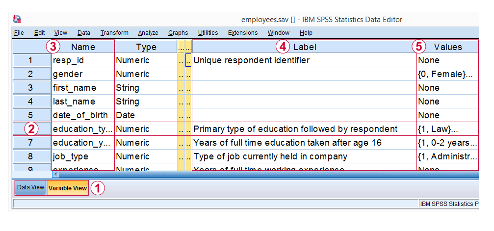 SPSS Variable View with Flagged Variables, Variable Labels, and Value Labels