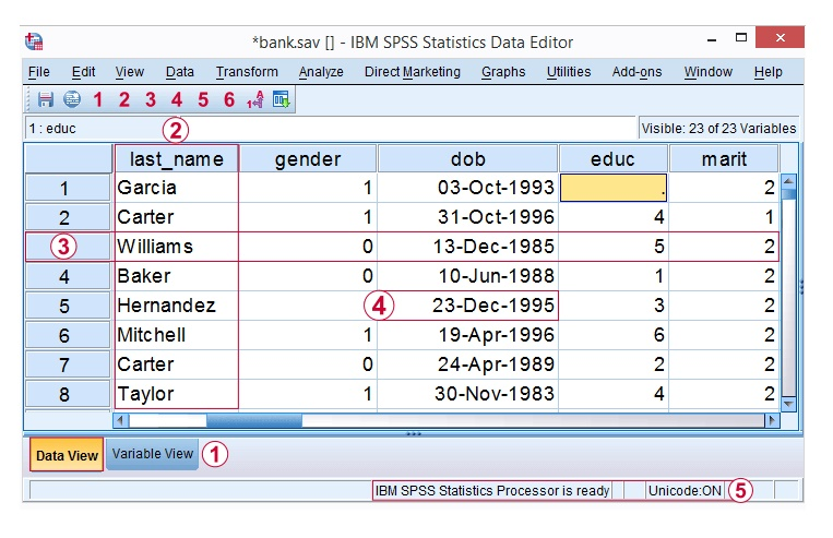 SPSS data view with flagged variables, cases, and values